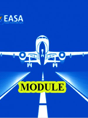 Safety and EASA1